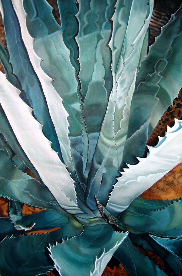 Agave Oil Painting